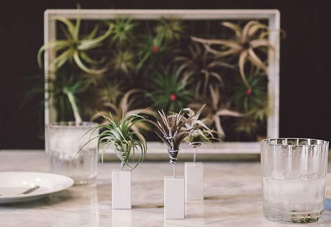 Живая стена из растений: белая ваза