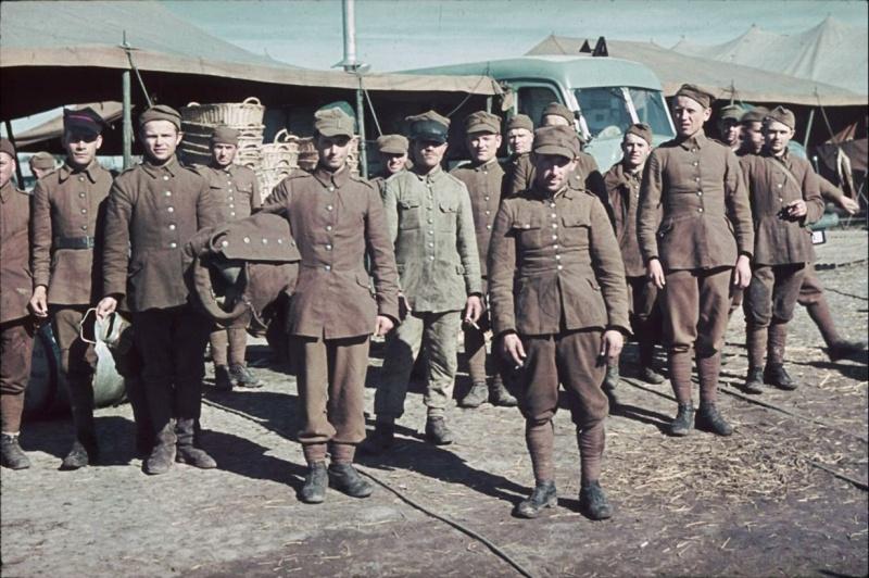 1. Как поляки Гитлеру служили (2.МИФ О ВИНОВНОСТИ ГЕРМАНИИ В РАЗВЯЗЫВАНИИ 2-й МИРОВОЙ ВОЙНЫ)