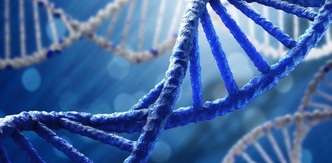 Как закачать в ДНК Аллегрову