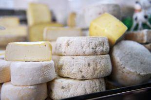 Вкусный праздник для всех. В Алтайском крае состоится сырный фестиваль