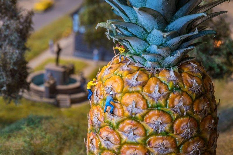 """""""Гора-ананас"""" инсталляции, искусство, креатив, миниатюры, необычно, творчество, фото, фотограф"""