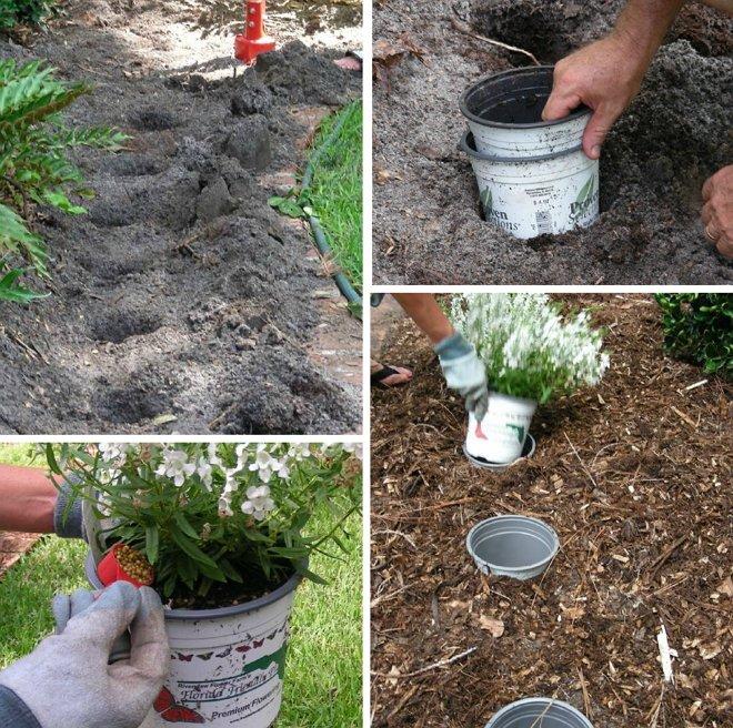 10 садовых хитростей для продвинутых дачников