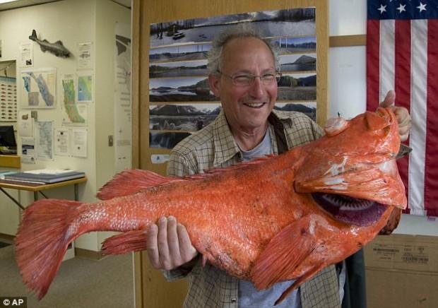 Житель Аляски поймал 200-летнего окуня