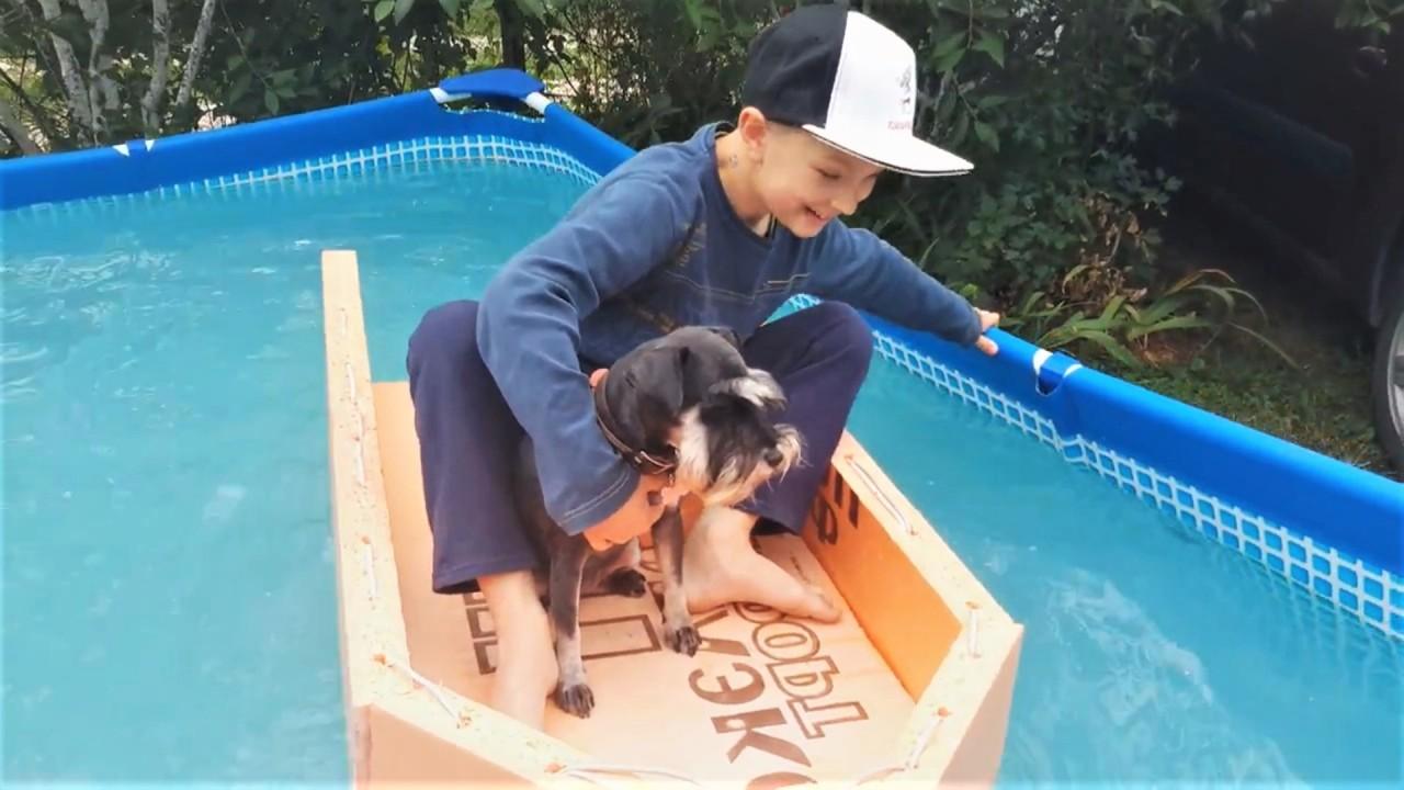 Прикольные и милые видео с собаками июль 2018