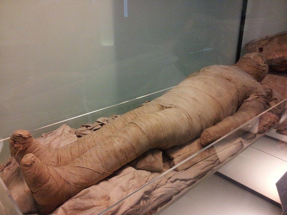 В Хабаровске найденное мумифицированное тело опознали родственники