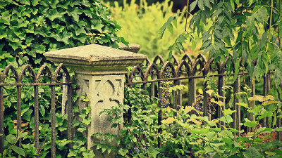 Бывшего директора Хованского кладбища заподозрили в вымогательстве у мигрантов
