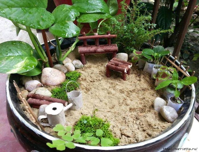 Сад в горшке своими руками фото 493