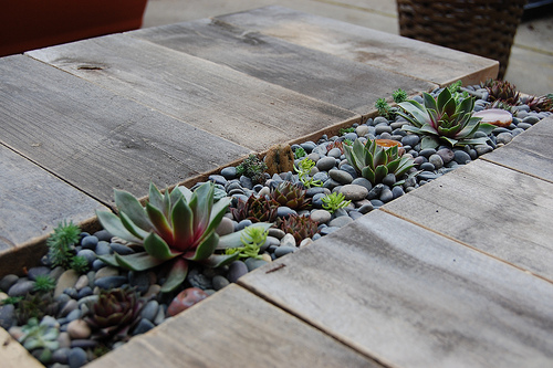 Стол с растительностью внутри