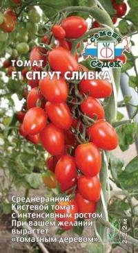 Томатное дерево Спрут F-1, Спрут -Черри, Спрут - Сливка. Харьков - изображение 3