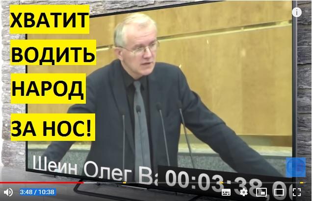 Олег Шеин снова разнес в пух и прах политику правительства России