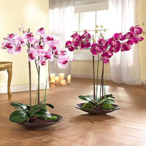 Субстрат для орхидей Орхидеи