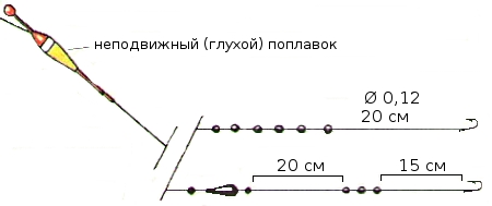 5a54c5b3b4304a6917b059a70e2fe8e2.jpg