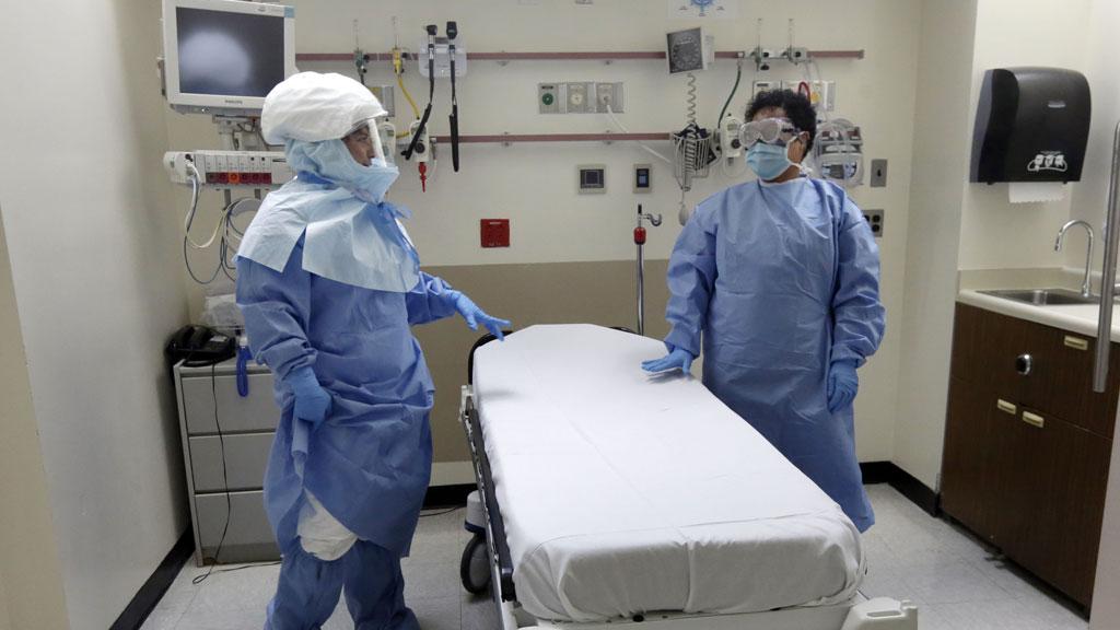 В США откроют центр пересадки свиных сердец человеку
