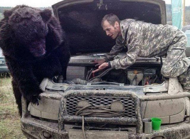 Снимки, которые можно было сделать только в России (40 фото)