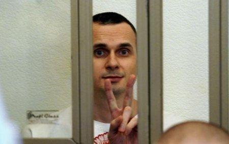 Террориста на свободу: оппозиция пробила новое дно, взявшись за заказ по Сенцову