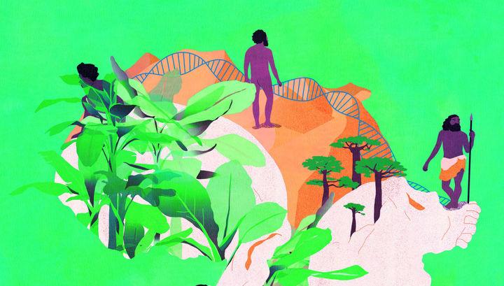 Свежий взгляд: люди эволюционировали независимо по всей Африке, а потом смешались