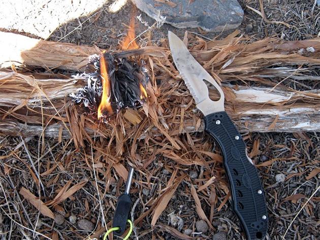 Использования древесной коры в борьбе за жизнь