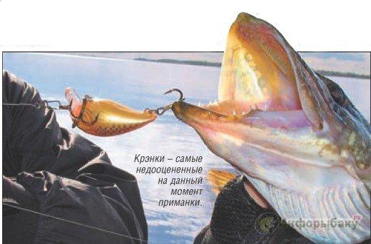 рыбалка на завтра в брянске