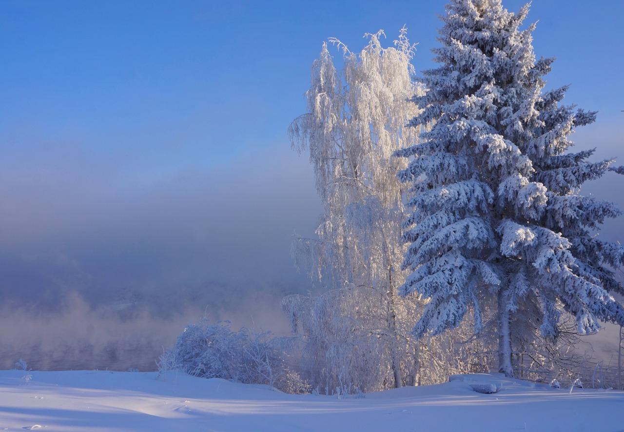 Природа Росии 7