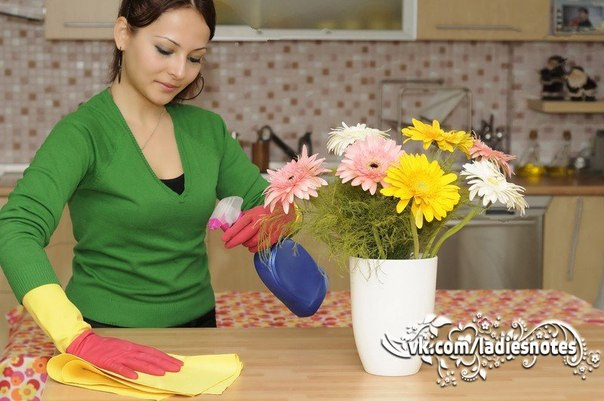 Кухонная эко-находка! Чудо-спрей для чистки кухонных поверхностей!