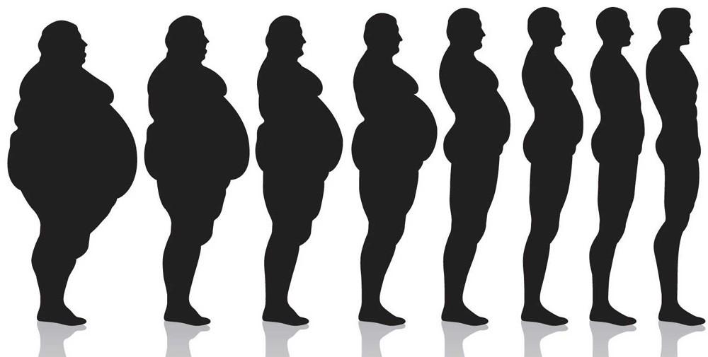 От чего толстеем?