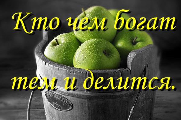 ПРИТЧА НЕДЕЛИ. Ведро яблок