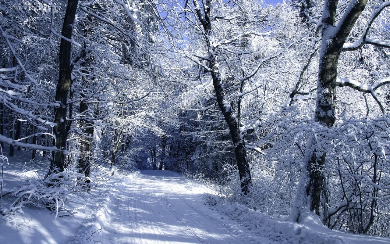 ДЕТКАМ НА ЗАМЕТКУ. Рассказы о зиме