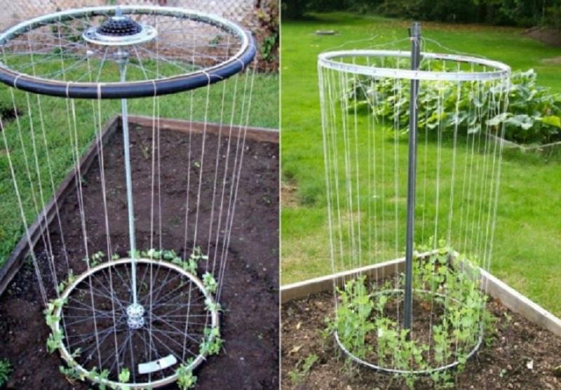 Идеи и советы для дачи и сада, котрые вы несомненно захотите использовать