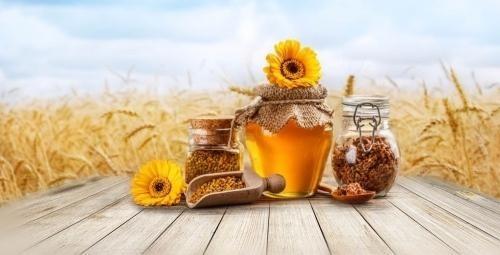 Мед — лекарство на все случаи в жизни!