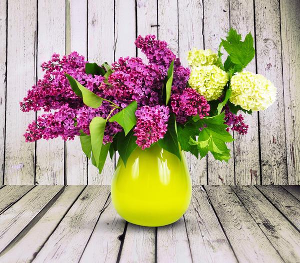 Сода поможет сохранить свежесть срезанных цветов