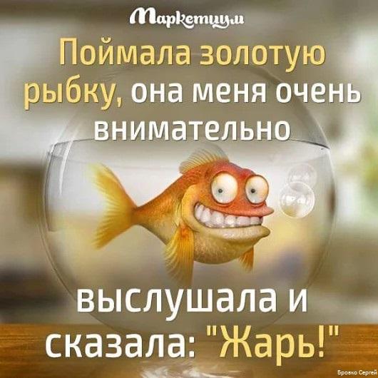 ироничные стихи про рыбу