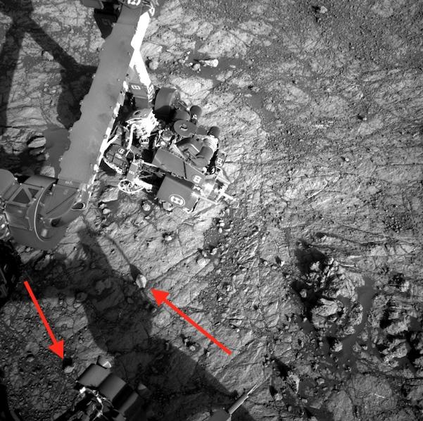 На фото с Марса прямо рядом с опорами марсохода видны морские раковины