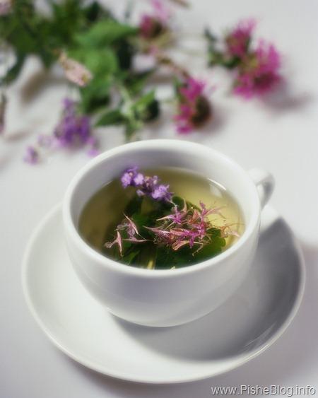 Народные рецепты из лекарственных трав ягод и плодов