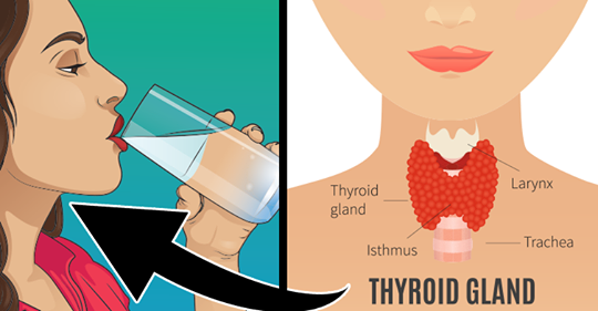 Это может помочь вылечить щитовидную железу и сбалансировать ее гормоны