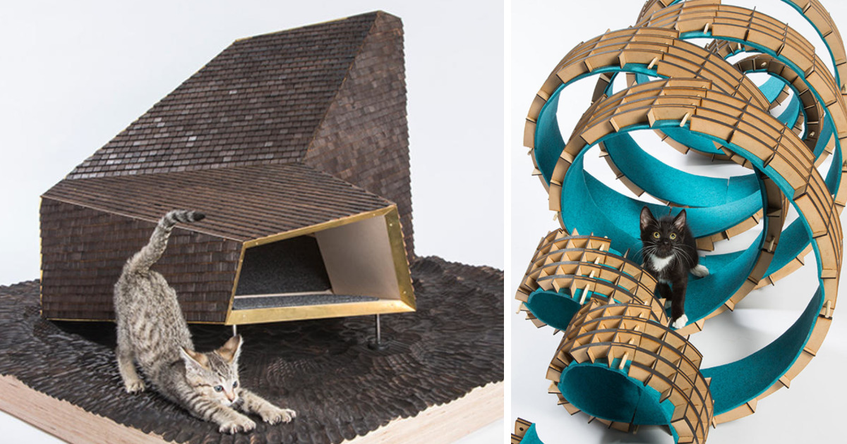 Architects Create Amazing Homes For Cats To Help Homeless Felines