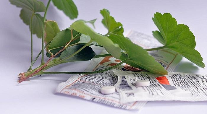 янтарная кислота для растений дозировка