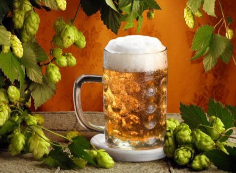 Как использовать пиво в хозяйстве
