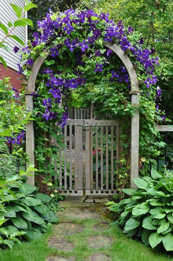 Flower garden / Цветочный сад. Комментарии :...