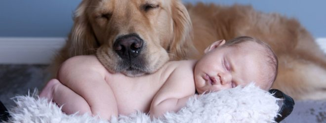 Дети, о которых заботились животные