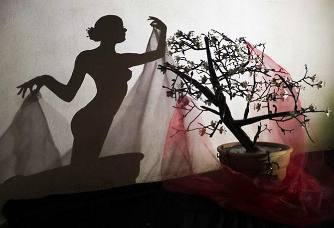 Художники, рисующие тенью