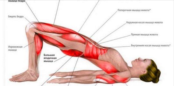 Прокачайте все мышцы с помощью 3-х упражнений