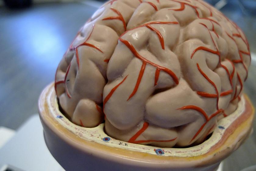 Растворимые импланты для операций на мозге