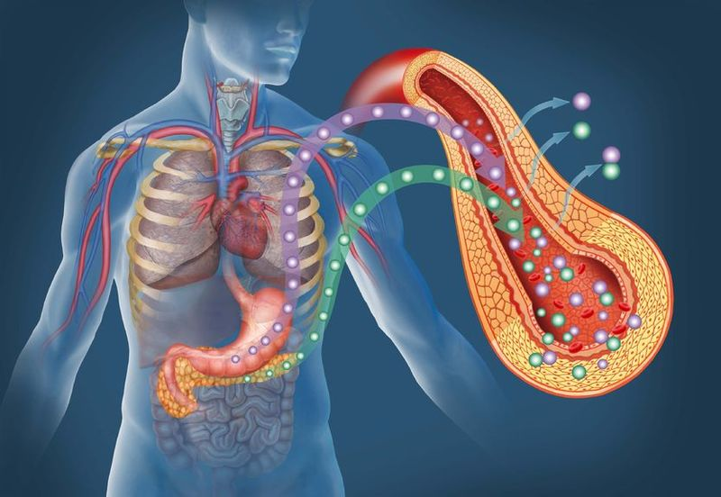 Средство ранней диагностики инсулинорезистентности