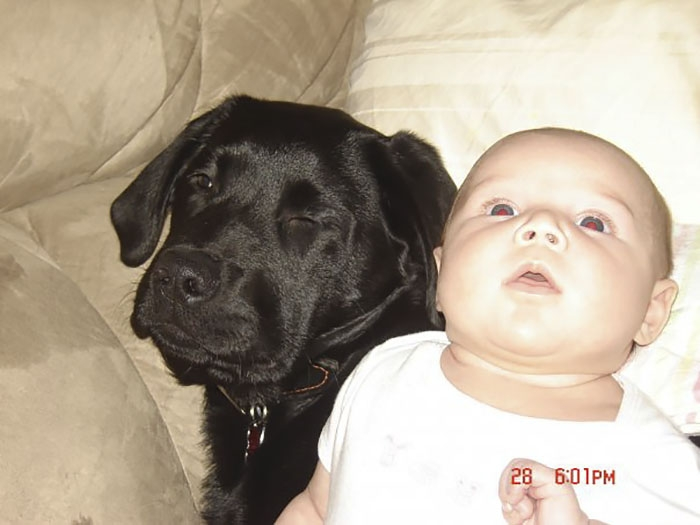 Её отговаривали все! Но эта мать всё равно подарила щенка дочке – и вот что из этого вышло