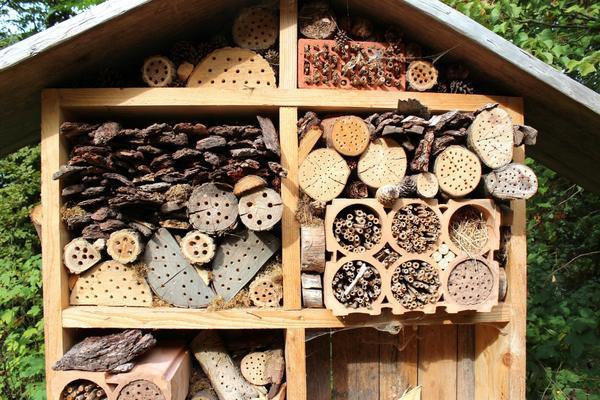 Как сделать домик для бабочке