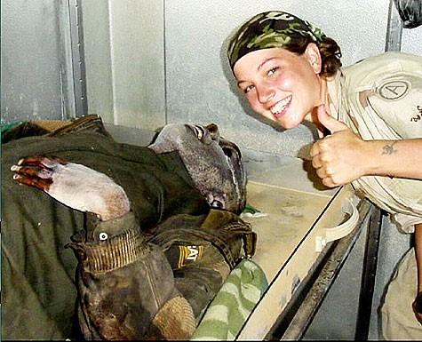 НАТО: 65 ЛЕТ АЛЬЯНСУ. ВСПОМИНАЕМ ЗАСЛУГИ