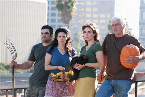 Как семья на 4 сотках собирает 3 тонны овощей и кормит все рестораны города!