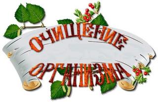 Бесплатный тренинг по очищению организма «АнтиШлак!»
