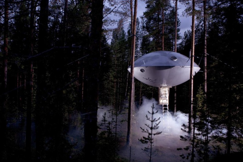 Необычные отели с номерами на деревьях