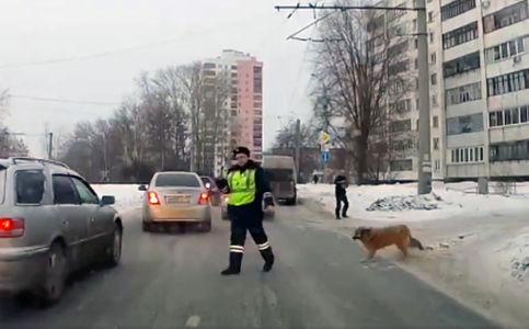 Полицейский рассказал, почем…